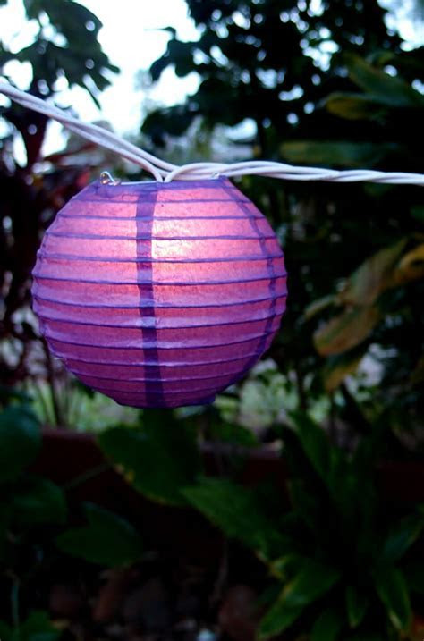 Paper Lanterns Purple