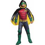 Rubies Premium Robin DC Comics Gotham City Childs Boys Halloween Costume 620101 by fearless Apparel