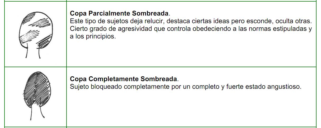 arboles_tronco17
