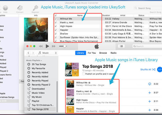 How to Convert and Play Apple Music on Zune MP3 Players