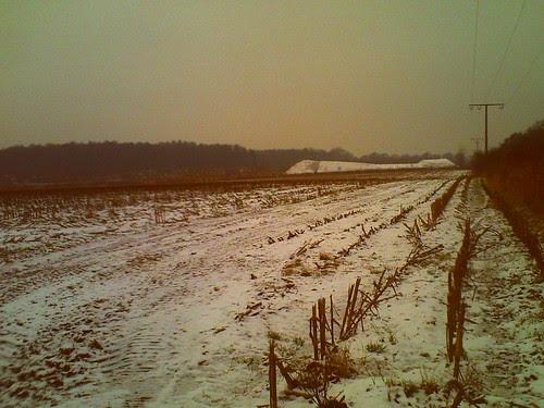 008/365 • winter