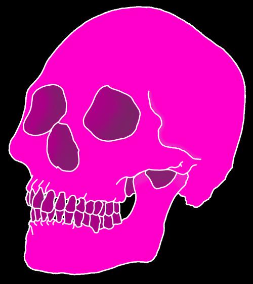 Art & Aesthetics Vaporwave - skull png download - 500*563 ...
