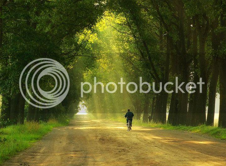 photo Sergey-Nesterchuk-5_zps832ceced.jpg