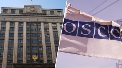 «Двойные стандарты в подходах»: как отреагировали на отказ ОБСЕ наблюдать за выборами