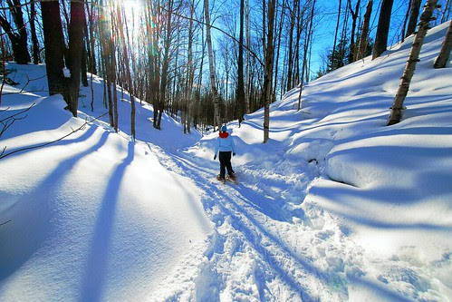 Sarah, Snowshoes, Shadows by dcclark