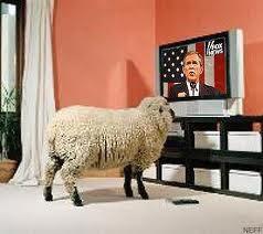"""""""Nós podemos fazer as ovelhas acreditar em qualquer coisa""""."""