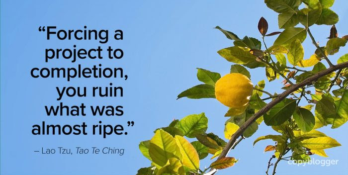 forcing a project to completion, you ruin what was almost ripe – lao tzu