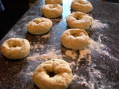 Cheddar Parsley Bagels