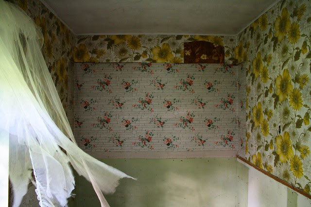 floral patterned wallpaper and decomposing curtains blowing in the breeze for lack of a better title