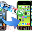 Easily Transfer Data from iPhone 3GS/4/4S/5 to iPhone 5S/5C