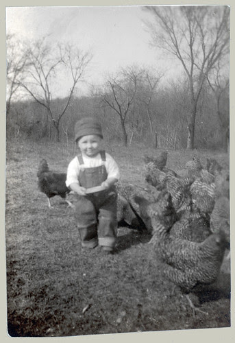 Child and Chickens