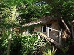 Bure in garden setting at Matava, Kadavu, Fiji