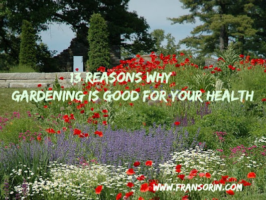 13 Reasons Why Gardening Is Good For Your Health