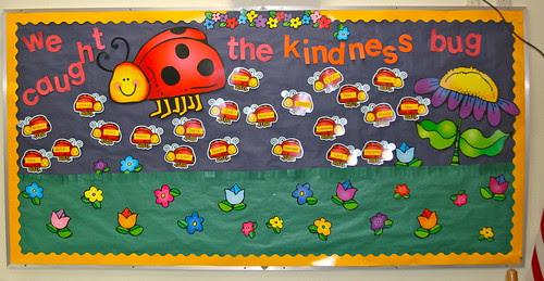kindness bugs