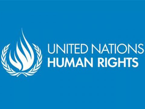 United Nations human rights experts urge India to repeal FCRA law - Development News