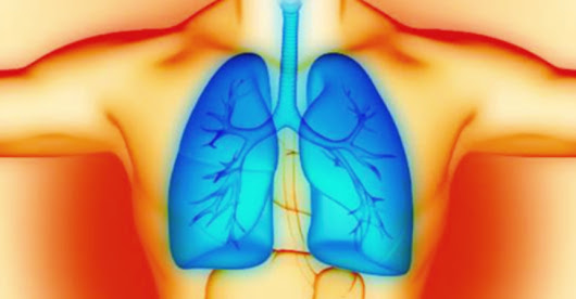 Common Plant Compound Found to Reverse Lung Damage