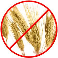 Roger Biduk says Grains are Very Bad for Your Carnivore ...
