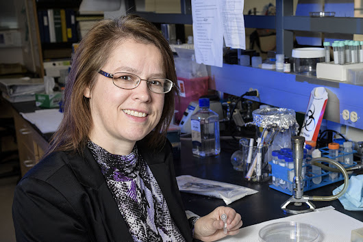 Wright State researchers using NIH award to battle viral respiratory infections