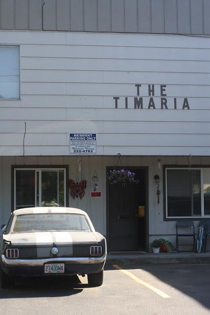 timaria