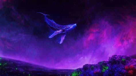 wallpaper  purple sky whale animal smoke background