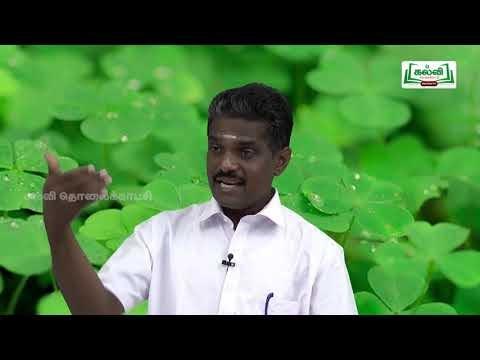 முப்பரிமாணம் Std 12 TM  Bio Botany Genetics Kalvi TV