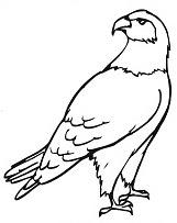 free eagle coloring pages ideas for preschool  preschool