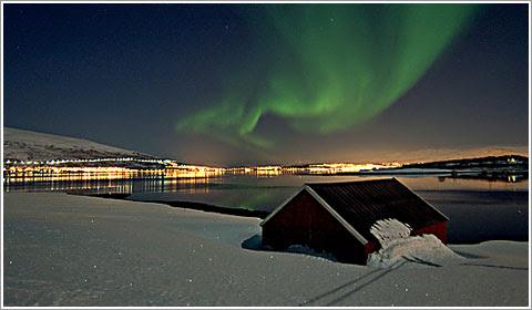 Fotos Artico