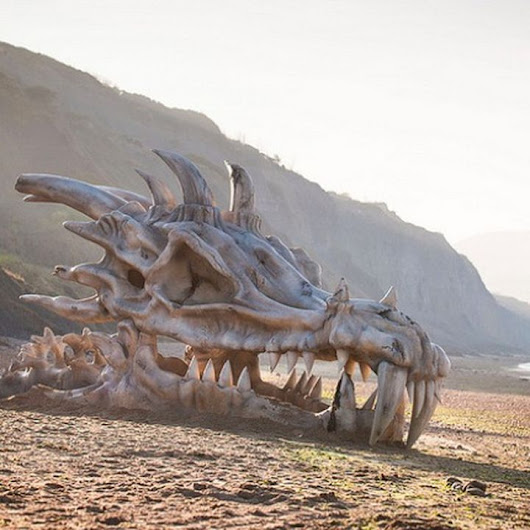 How Did This Giant Dragon Skull Land on a British Beach?