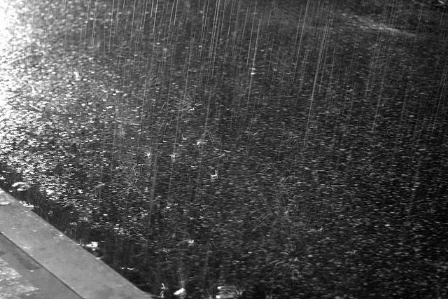 rainy november night
