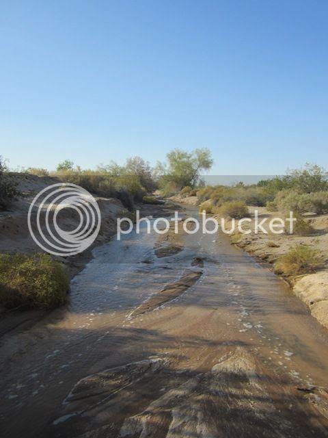 Desert stream photo SonoranApril20132698a_zps86fad2c4.jpg