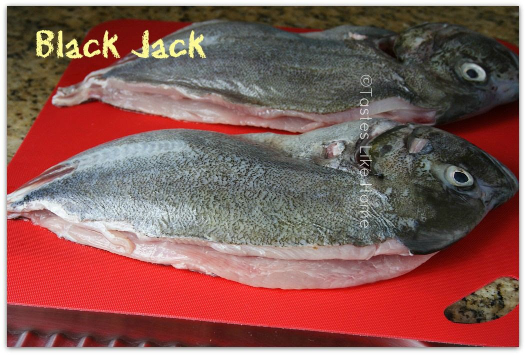 Black Jack photo blackjackfish3_zps50c18eb9.jpg