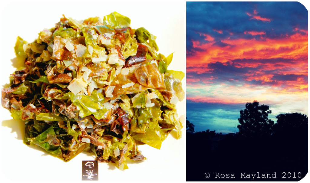Seaweed Picnik collage 2 bis