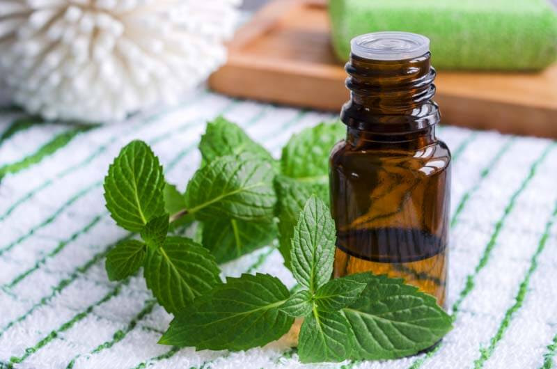 Image result for Essential oils for lupus