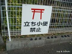 walk121611 (3)