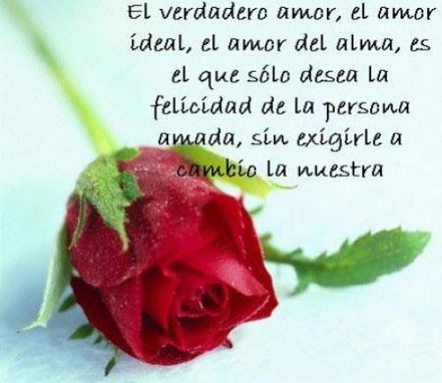 Frasesamor Imagenes De Rosas Rojas Con Frases De Amor