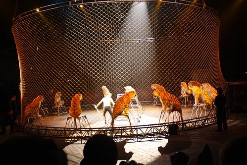 Circus-20