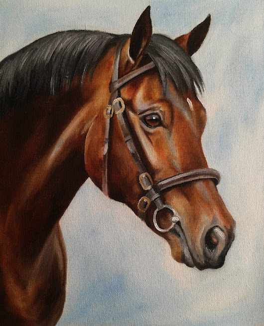 Thoroughbred Stallion Sketch, 2015 by Stephanie Greaves