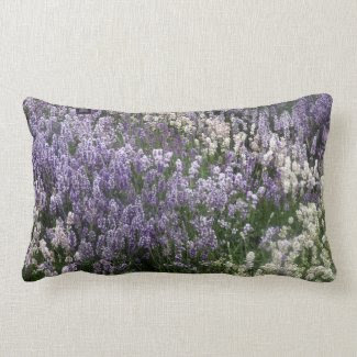 Field Of Lavender Cushion Pillow