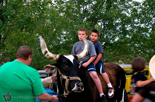 Joe brought the 2900 lb. bull over for the kids to ride around