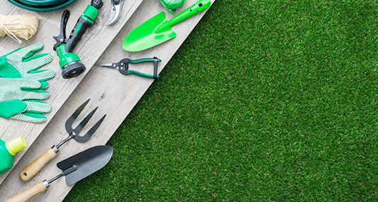 Know How to Take Care of your Lawn Season by Season