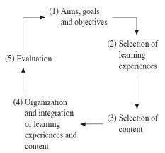 Curriculum #19