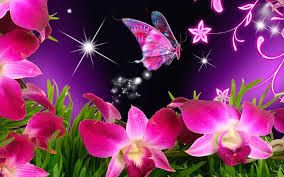 Imagenes Lindas De Rosas Con Mariposas Descargar Imagenes Gratis