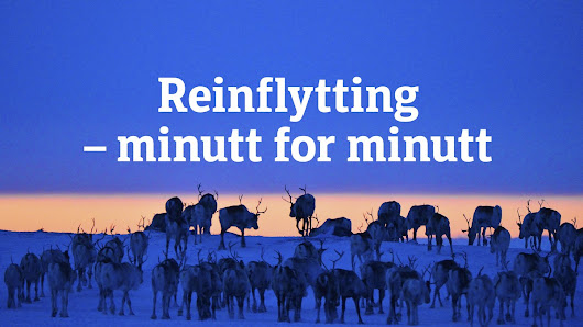 Reinflytting – Minutt for minutt