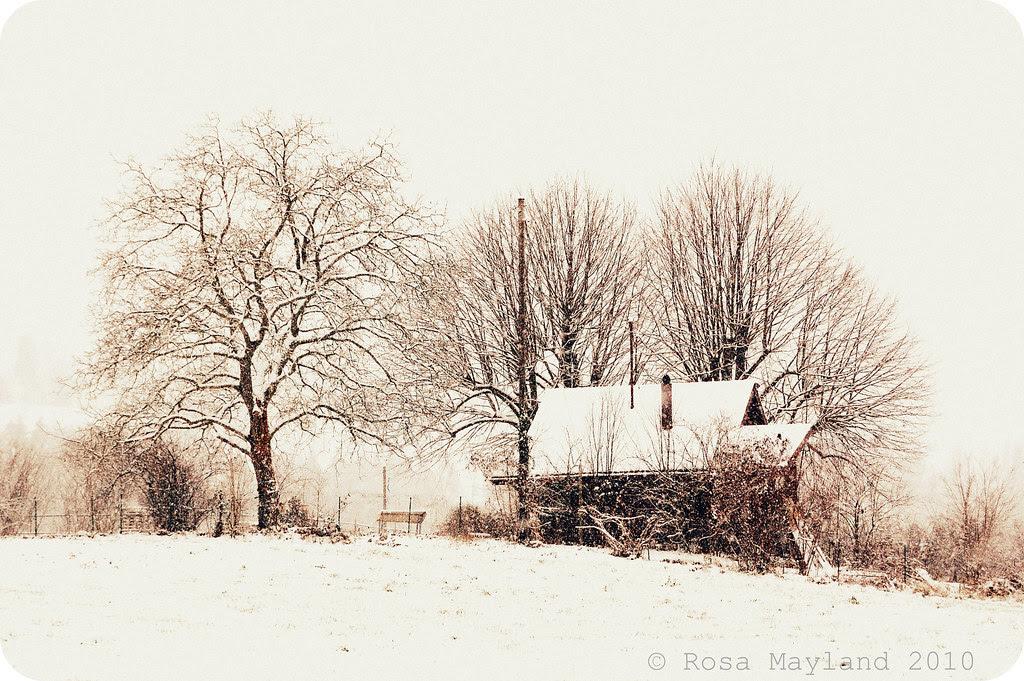 Snow Veyrier 7.1 bis