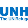 Three Women, One Man in Race for Top UN Refugee Post - UN Tribune