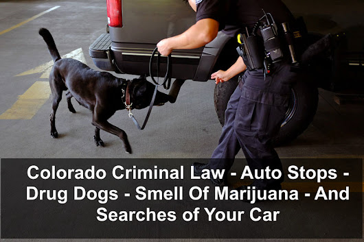 Colorado Criminal Law – Auto Stops – Drug Dogs – Smell Of Marijuana – And Searches of Your Car