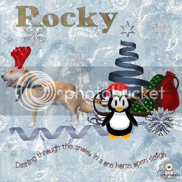Winter,Dog,Penguins