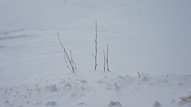 anteketborka.blogspot.com, mm_7_3