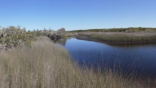creekPano