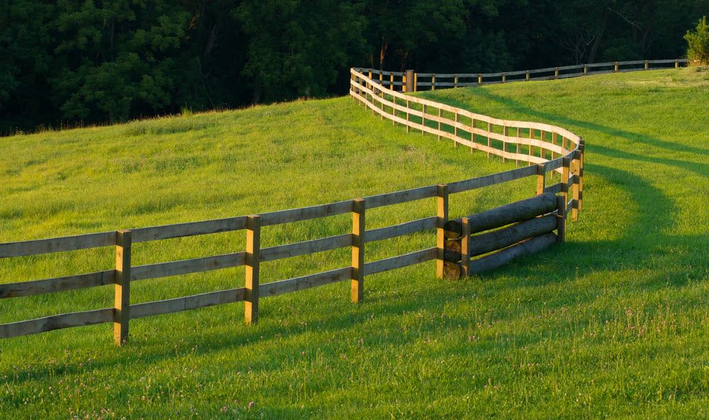 Image result for fence in the fields